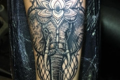 Greyscale elephant with fishnet and jewel.