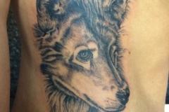Greyscale Wolf. Inkhaus Tattoo.