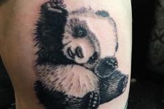 Greyscale Panda. Inkhaus Tattoo.