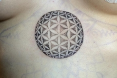 Flower of Life Sphere. Inkhaus Tattoo.