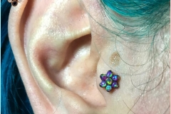 Healed Tragus with Anatometal flower. Inkhaus Tattoo.