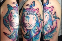 Watercolour Tigers and Butterflies. Inkhaus Tattoo.
