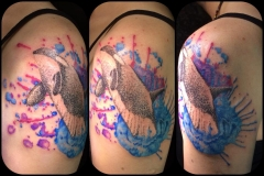 Watercolour Orca. Inkhaus Tattoo.